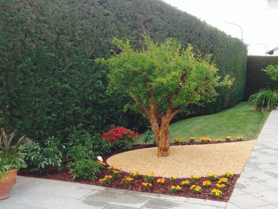 Green service aiuole classiche e moderne saluzzo le for Creazioni giardini